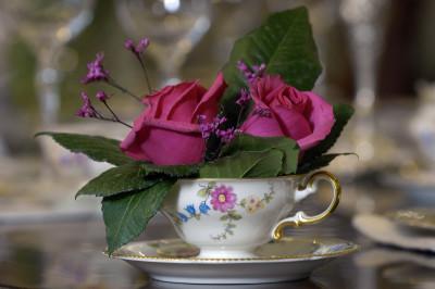 Mother Daughter Princess Tea