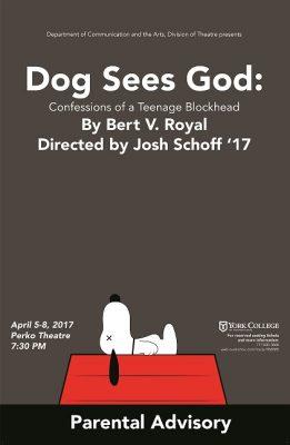Dog Sees God: Confessions of a Teenage Blockhead