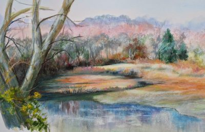 Light in the Landscape: Paintings by Sharon Benner