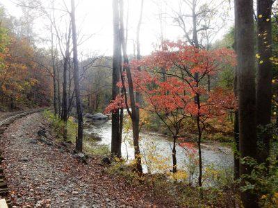 Fall Foliage Train Rides