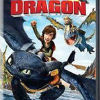 "Family Movie Night ""How To Train Your Dragon"""