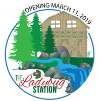 Ladybug Station Opening