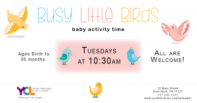 Busy Little Birds