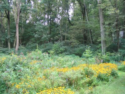 The 14th Annual Gardening with Natives Seminars an...