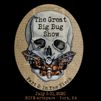 The Great Big Bug Show, Part 2 at HIVE artspace