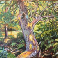 Landscape Painting In Oil and Acrylic with Anita Williams (online)