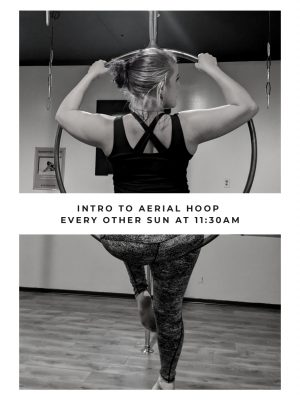 Intro to Aerial Hoop - November