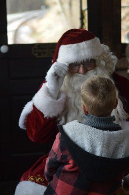 Tannenbaum Christmas Tree Train