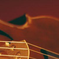 Tchaikovsky and Barber: Livestream Concert